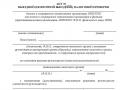 Акт выездной налоговой проверки 1