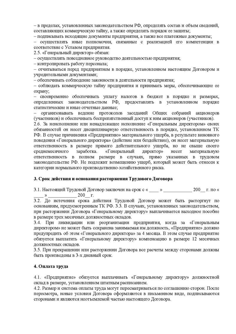 должностная инструкция на исполнительного директора образец