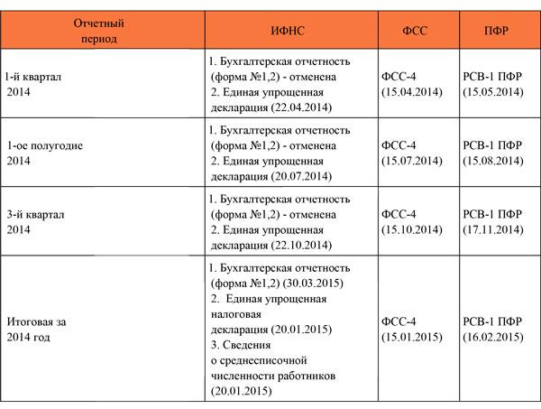 Отчетность ООО на ОСНО